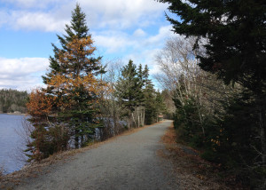 Musquodoboit Harbour Railway Trail Nova Scotia Rails to Trails